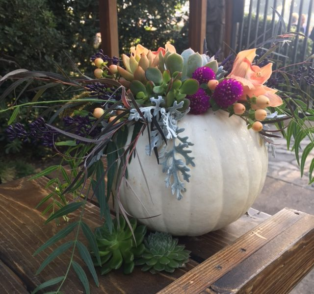 Decorating Pumpkins With Natural Elements & Foliage