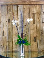 Orchids Blue
